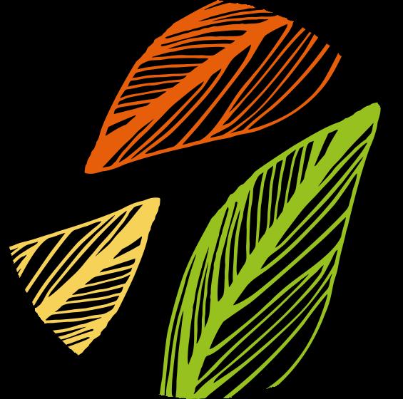 kurzy-lgt